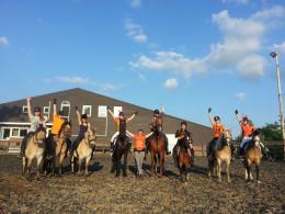 paarden voetbal