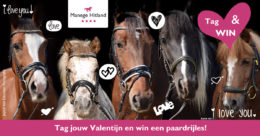 ManageHitland-Valentijn