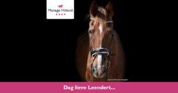 ManageHitland-Leendert