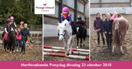 201810 ManageHitland-Ponydag