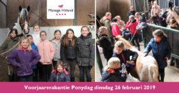 201902 ManageHitland-Ponydag