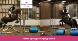 ManageHitland-Springles
