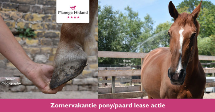 201905 ManageHitland-Zomerlease