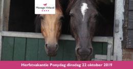 201910 ManageHitland-Ponydag