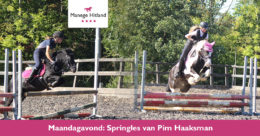201910 ManageHitland-Springles
