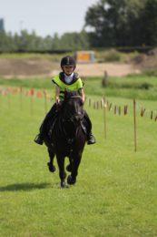 stompwijkse ponyrennen