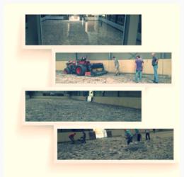 paardenbak grond